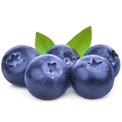 Blueberry Wild Food Flavour - The Flavor Apprentice