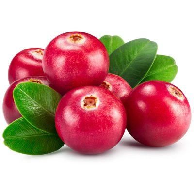 Cranberry Food Flavour - The Flavor Apprentice
