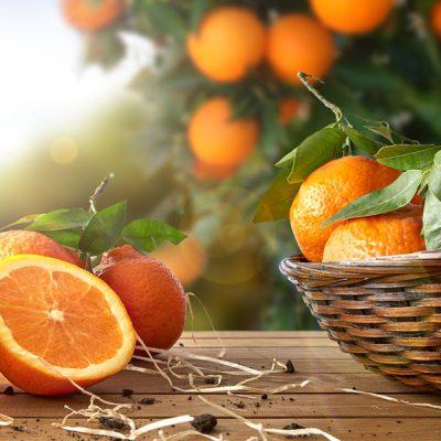 Juicy Orange Food Flavour by Capella