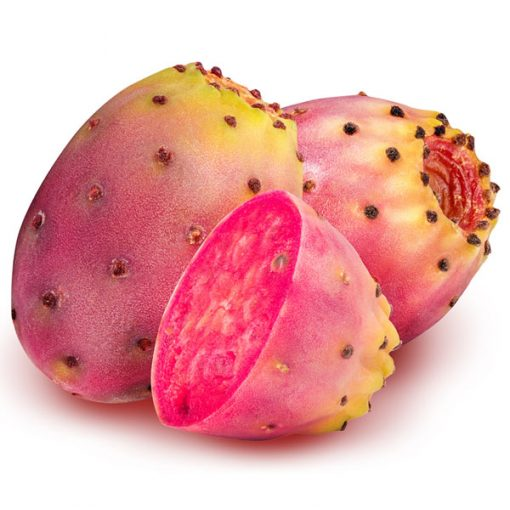 Cactus Food Flavour by Inawera