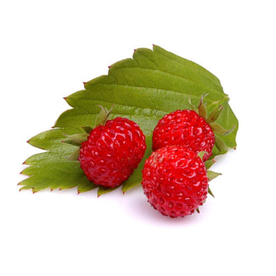 Alpine Strawberry Food Flavour