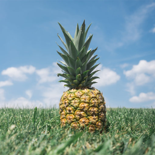 Golden Pineapple Food Flavour