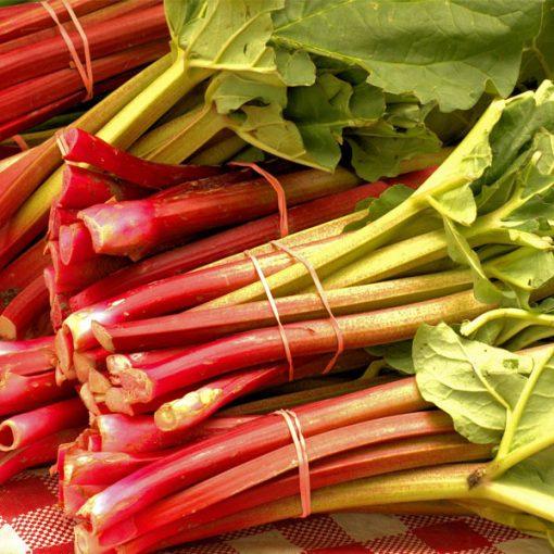 Rhubarb Food Flavour